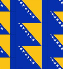 Bosnia and Herzegovina flag texture vector