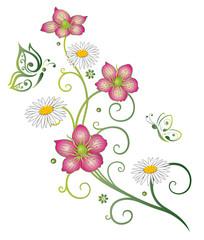 Frühling, Blumen, Gänseblümchen