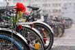 auffaelliges Fahrrad mit Blumen - 76003730