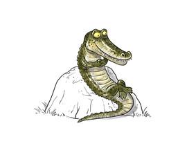 Alligator resting