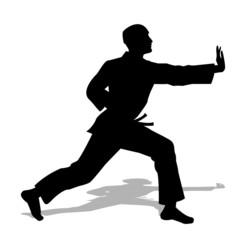 judo silhouette su sfondo bianco