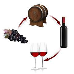 Rotwein, Herstellung, Produktion. freigestellt