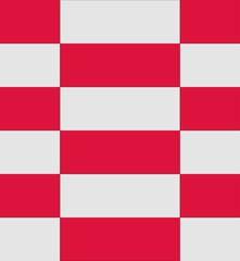 Poland flag texture vector