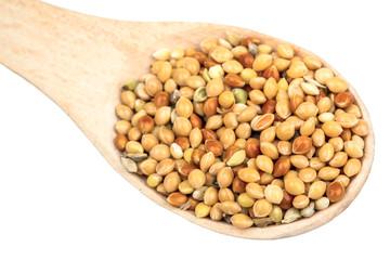 Millet in a spoon