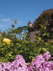 Yvoire - Jardin