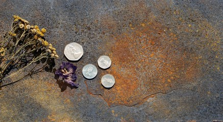 Münzen 9