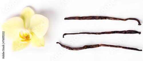 Vanilla stick - 76011332