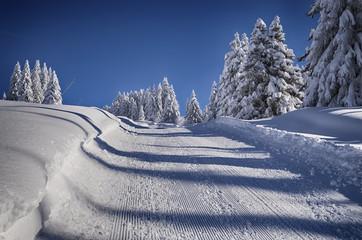 paysage de neige-savoie