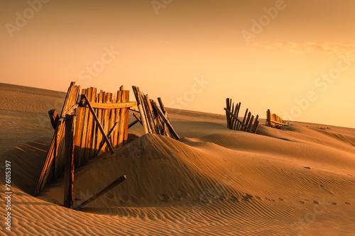 Naklejka Fences in the sand