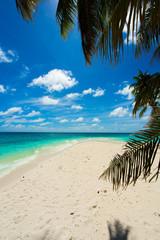 Rest in Paradise - Malediven - Strand mit Palmen