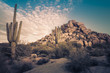 Wild desert landscape - 76020165