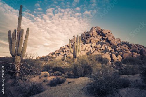 Fotobehang Zandwoestijn Wild desert landscape