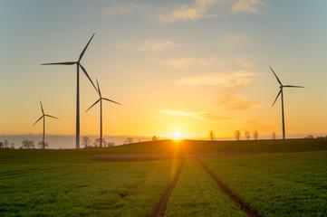 turbiny wiatrowe na polu,podczas wschodu słońca