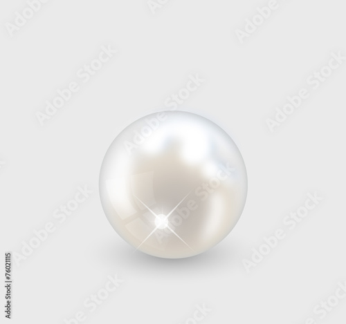 Beautiful realistic pearl illustration vector - 76021115