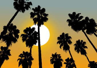 Relax vector sunset scene