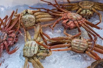 Fresh crabs at seafood market