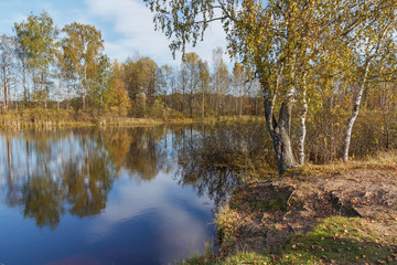 Landscape on the banks of the pond in golden autumn