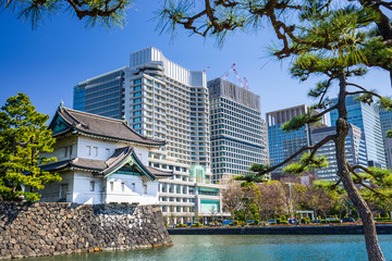 Tokyo Imperial Moat and Cityscape