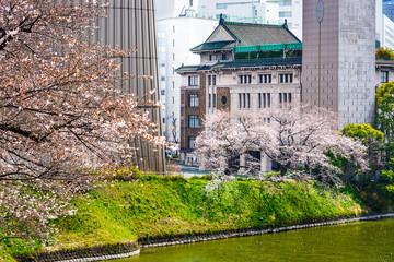 Tokyo, Japan view of buildings around Chidorigafuchi moat
