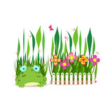 fence with spring flowers and frog