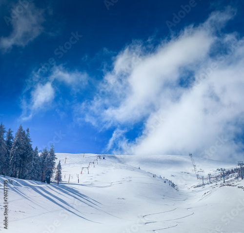 WInter Landscape - 76027795
