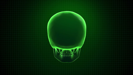 Digital 3D Animation of Human skull green  Loopable. Alpha matte