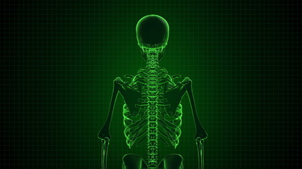 Human Skeleton in Sci-fi green interface Loopable. Alpha matte