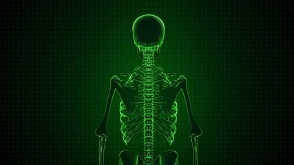 Human Skeleton in Sci-fi green interface Loopable. Alpha matte