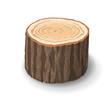 Cross section of tree stump, vector illustration - 76032152