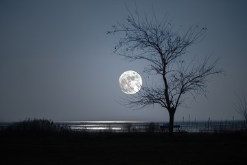 isola di grado ( italia) luna gradese