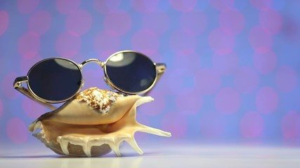 Shell and sunglasses as travel concept on blurry background
