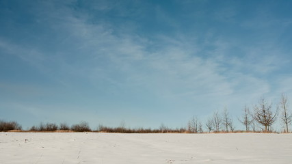 Snow field and blue sky