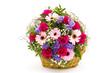 Obrazy na płótnie, fototapety, zdjęcia, fotoobrazy drukowane : colourful flowers in a basket