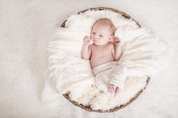 Newborn Baby wach von oben in einem Korb