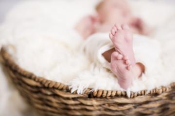Newborn Babys kleine Füße
