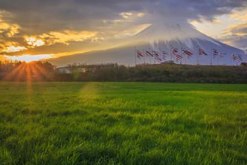 Sunrise Mt. Fuji and carp streamer