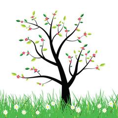 Flowering spring tree illustration background