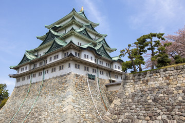 Nagoya Castle in Japan during cherry blossom season in spring.