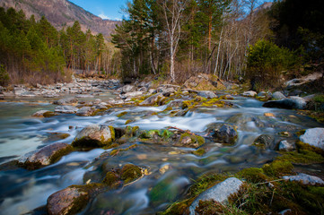 Arshan at the Sayan mountains in Buriatya, Siberia - Russia