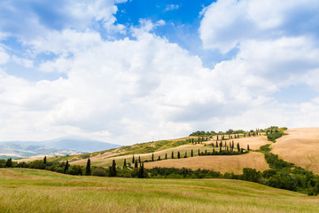 winding road flanked with cypresses in crete senesi Tuscany, Ita