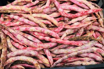 legume fagioli da sgranare