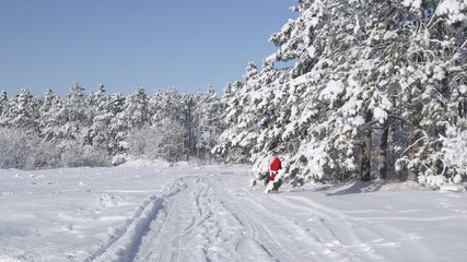 Santa Claus with gifts bag walking in snow winter forest