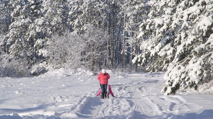 People sledding in the winter forest