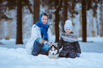 winter walk with husky