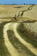 Countryside dirt road in Tuscany