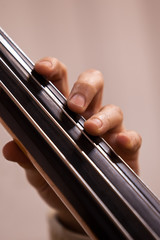 Hand of the musician on the bass strings