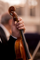Hand holding a violin musician