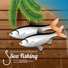 fish on the deck (fishing)