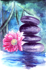 lotus and stones in water