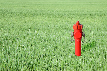Red hydrant in a green field - concept image